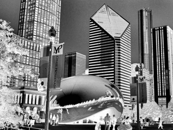The Bean Poster featuring the photograph The Bean - 2 by Ely Arsha