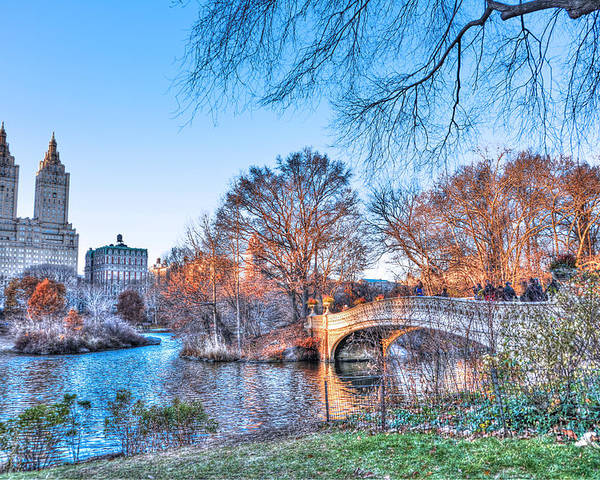 The Bow Bridge Poster featuring the photograph The Bow Bridge In Central Park by Randy Aveille