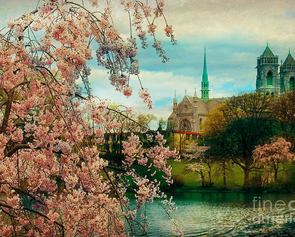 The Cathedral Basilica Of The Sacred Heart Poster featuring the photograph The Cathedral Basilica Of The Sacred Heart by Beth Ferris Sale