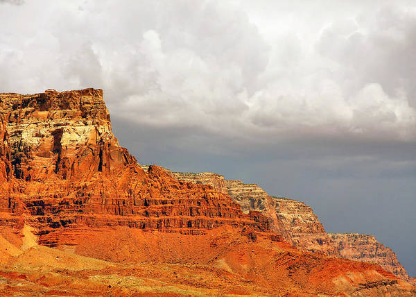 Vermilion Cliffs Poster featuring the photograph The Condor's Land by Christine Till