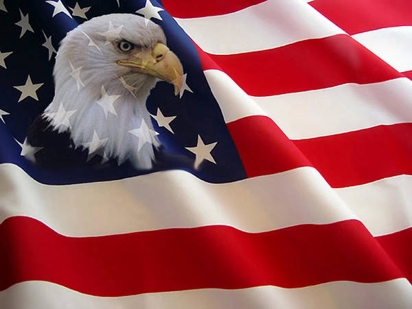Nature Eagles American Flag Poster featuring the photograph The Eagle Flag by Evelyn Patrick