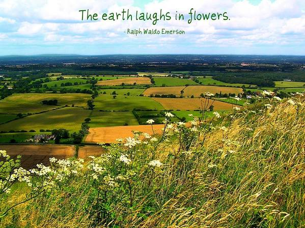 Affirmation Poster featuring the photograph The Earth Laughs In Flowers by Jen White