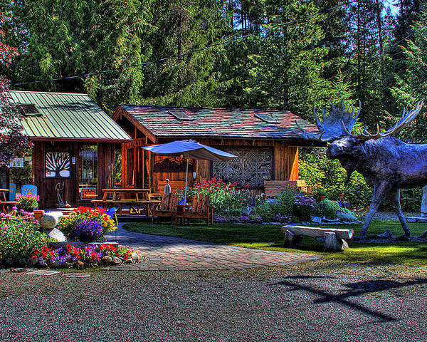 Priest Lake Poster featuring the photograph The Entree Gallery II by David Patterson