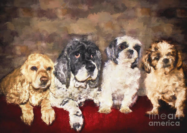 Cute Poster featuring the painting The Four Amigos by Janice Pariza
