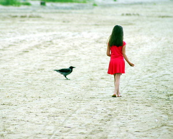 Coast Poster featuring the photograph The Girl And The Raven by Vadim Grabbe