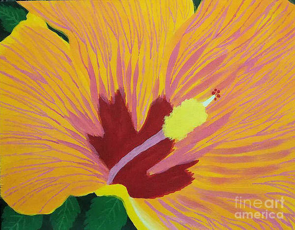 Flowers Poster featuring the drawing The Hibiscus by Sherri Gill