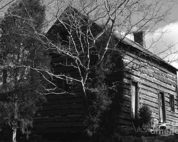 Cabins Poster featuring the photograph The Homestead by Richard Rizzo