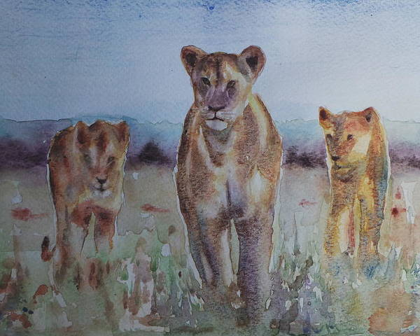 The Lions Of Africa 1 Poster featuring the painting The Lions Of Africa 1 by Baris Kibar