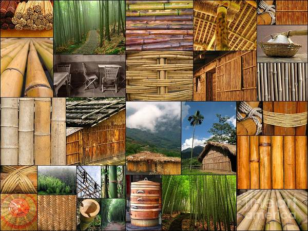 the Magic Of Bamboo Is A Collage Of Several Dozen Original Images Taken In Taiwan. They Show Are A Great Variety Of The Daily Uses Of Bamboo As Building Material Poster featuring the photograph The Magic Of Bamboo by Yali Shi