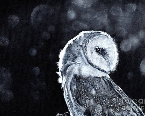 Owl Poster featuring the mixed media The Night Watcher by Bonnita Moaby