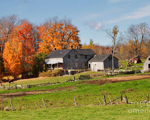 Farm Poster featuring the photograph The Old Farm In Autumn by Louise Heusinkveld
