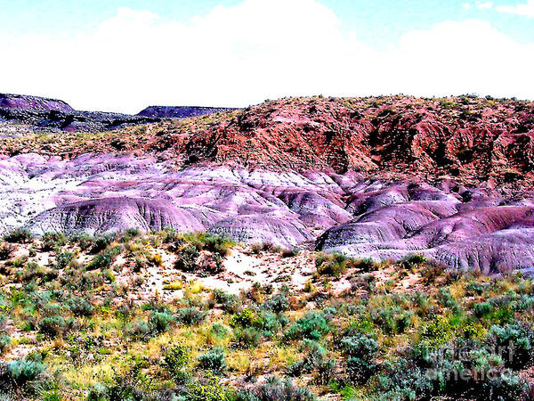Painted Desert Poster featuring the photograph The Painted Desert In Arizona by Merton Allen