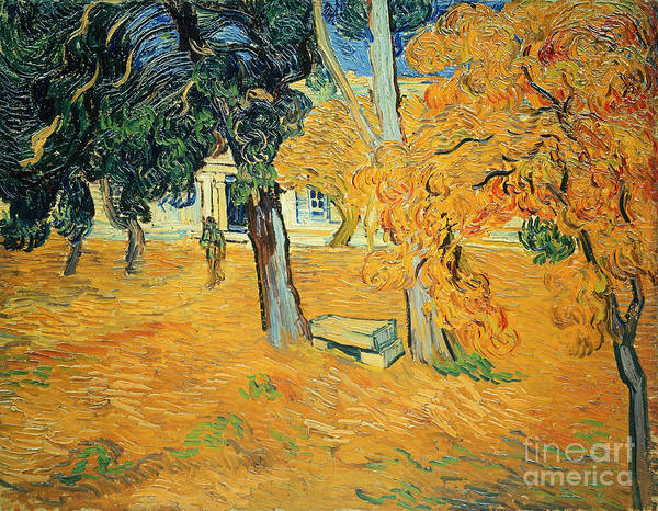 The Poster featuring the painting The Park At Saint Pauls Hospital Saint Remy by Vincent van Gogh
