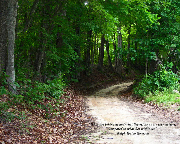 Path Poster featuring the photograph The Path by Ginger Howland