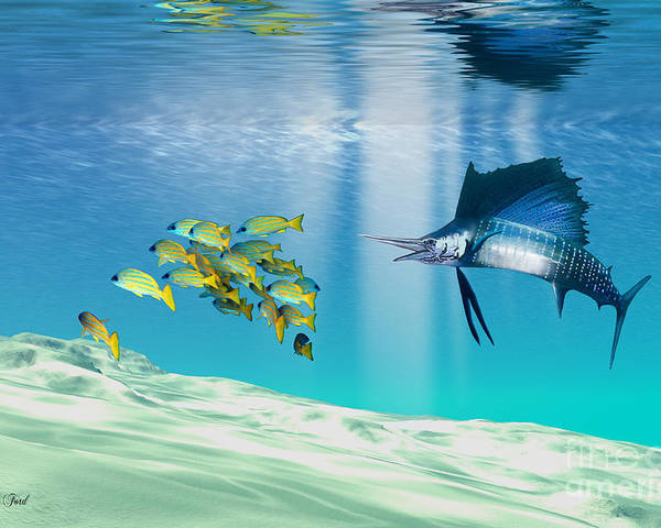 Sailfish Poster featuring the painting The Reef by Corey Ford