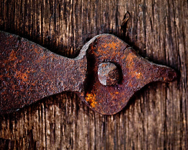 Door Poster featuring the photograph The Rusty Hinge by Lisa Russo