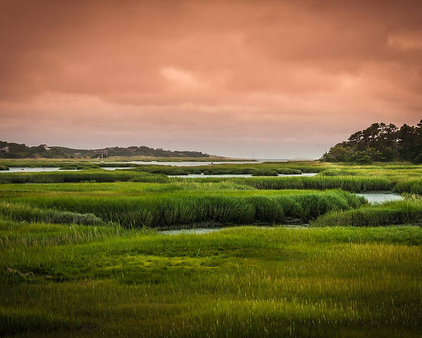 Duck Creek Marsh Poster featuring the photograph The Salt Marsh by Heather Hubbard