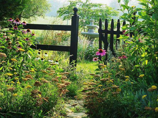 Flowers Poster featuring the photograph The Secret Garden by Joyce Kimble Smith