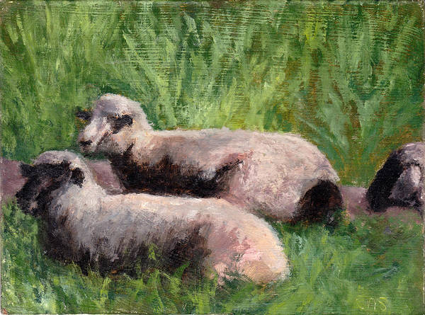 Animals Poster featuring the painting The Sheep Are Resting by Chris Neil Smith