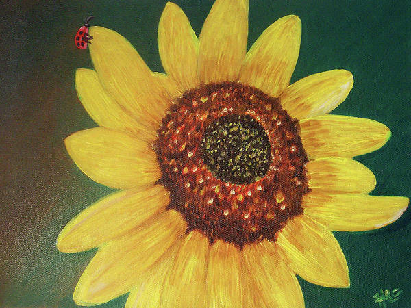 Sunflower Poster featuring the painting The Sunflower In Our Garden by Dee Conroy