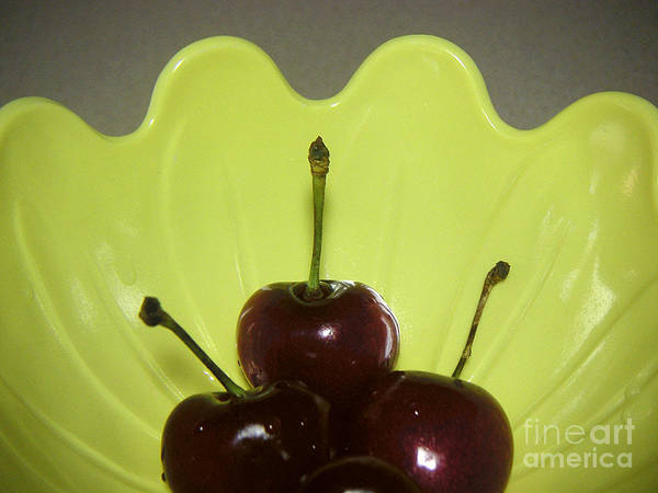Nature Poster featuring the photograph Three Cherries In Profile by Lucyna A M Green