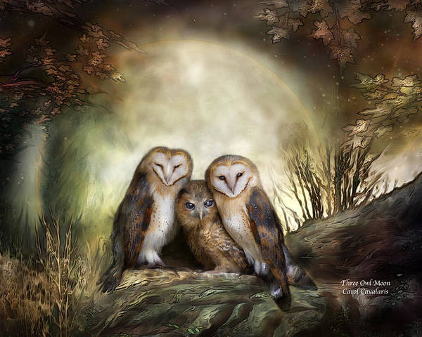 Owl Poster featuring the mixed media Three Owl Moon by Carol Cavalaris