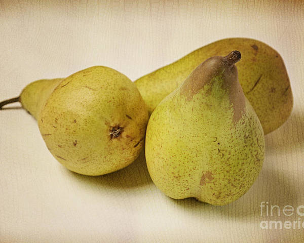 Three Poster featuring the photograph Three Pears by Andreas Berheide