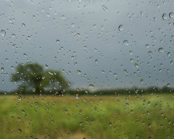 Landscape Poster featuring the photograph Through The Raindrops by By Way of Karma