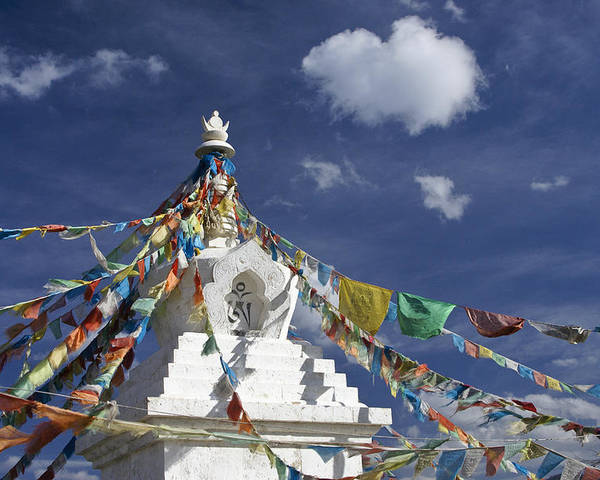 Asia Poster featuring the photograph Tibetan Stupa With Prayer Flags by Michele Burgess
