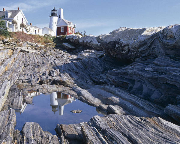 Pemaquid Point; Architecture Poster featuring the photograph Tide Pool Reflection Pemaquid Point Lighthouse Maine by George Oze