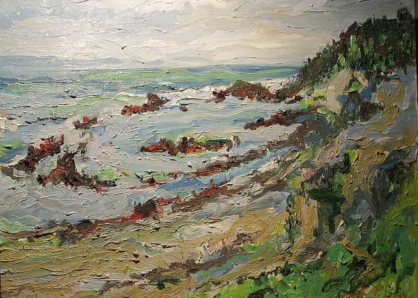 Landscape By The Pacific Ocean Poster featuring the painting Tide Pools At Princeton by Pat Gray