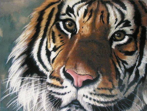 Tiger Poster featuring the pastel Tigger by Barbara Keith