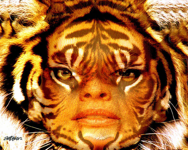Tigress Poster featuring the photograph Tigress by Seth Weaver