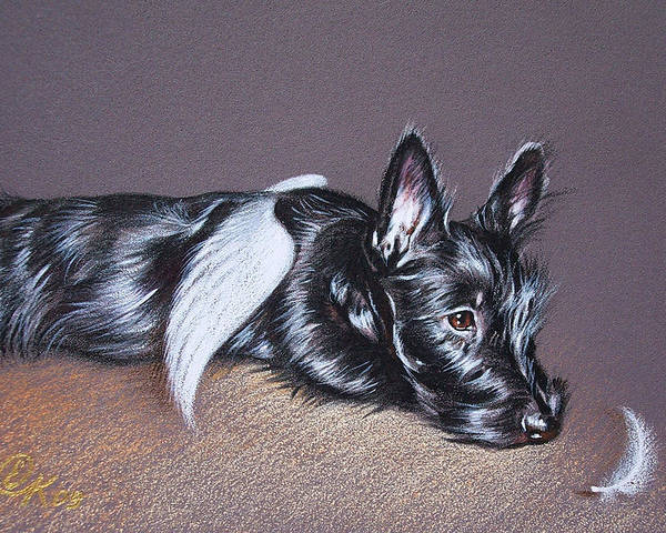 Scottish Terrier Poster featuring the drawing Tired Angel by Elena Kolotusha