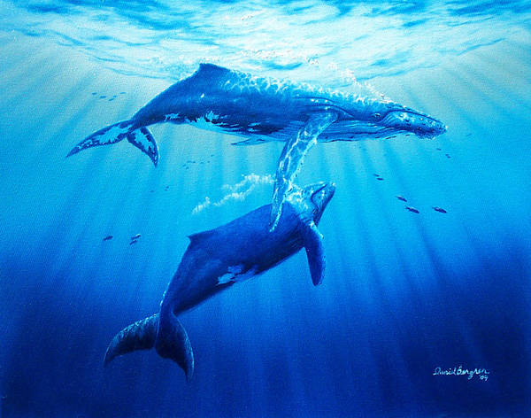 Whale Poster featuring the painting Together by Daniel Bergren