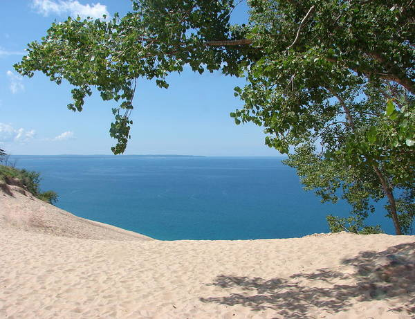 Sleeping Bear Dunes Poster featuring the photograph Top Of The Dune At Sleeping Bear by Michelle Calkins
