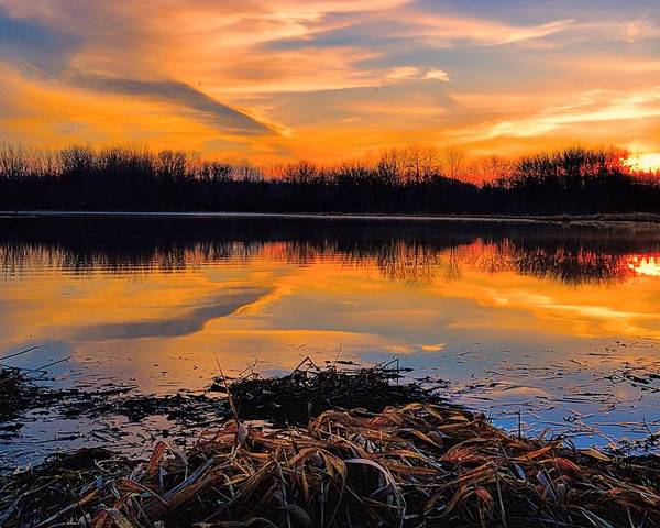 Sunrise Poster featuring the photograph Tranquil by Bonfire Photography