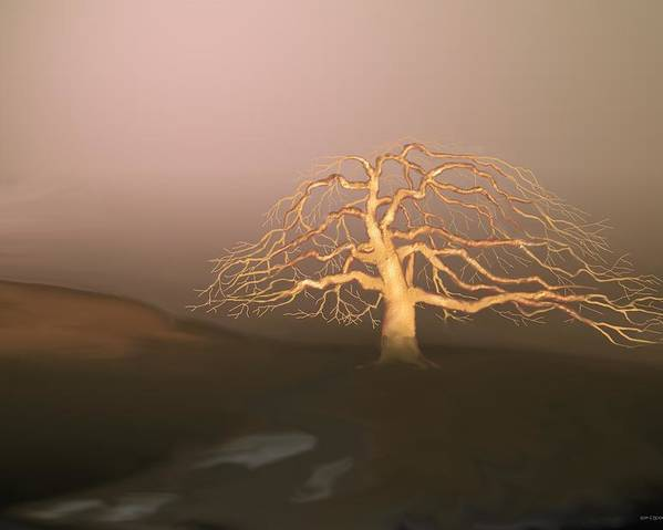 Tree Poster featuring the digital art Tree In Winter I by Kerry Beverly