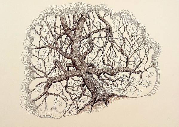Tree Poster featuring the drawing Tree In Winter II by Kerry Beverly