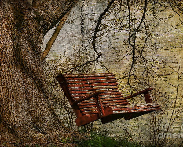 Tree Poster featuring the photograph Tree Swing By The Lake by Deborah Benoit