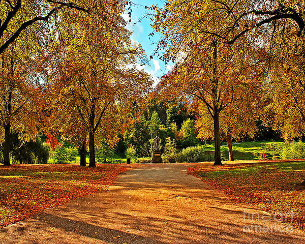 Park Poster featuring the photograph Trees In Autumn by Chris Smith