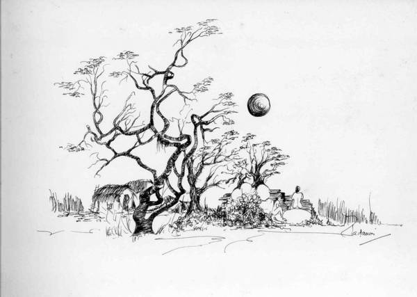 Landscape Poster featuring the drawing Trees Rocks And A Ball by Padamvir Singh