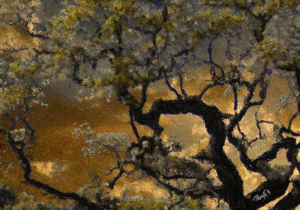 Fine Art Monterey Poster featuring the digital art Treetop Sunset by Jim Pavelle