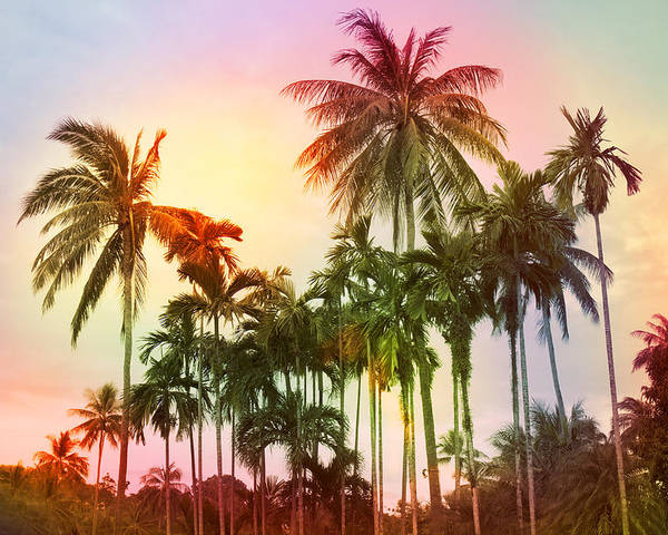 Tropical Poster featuring the photograph Tropical 11 by Mark Ashkenazi
