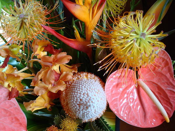Flowers Poster featuring the photograph Tropical Bouquet by Ileana Carreno