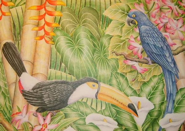Lanscape Tropical Flower Bird Poster featuring the drawing Tropical Dream by Jubamo