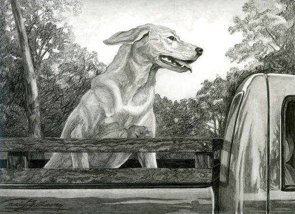 Dog Poster featuring the painting Truck Queen Study by Craig Gallaway