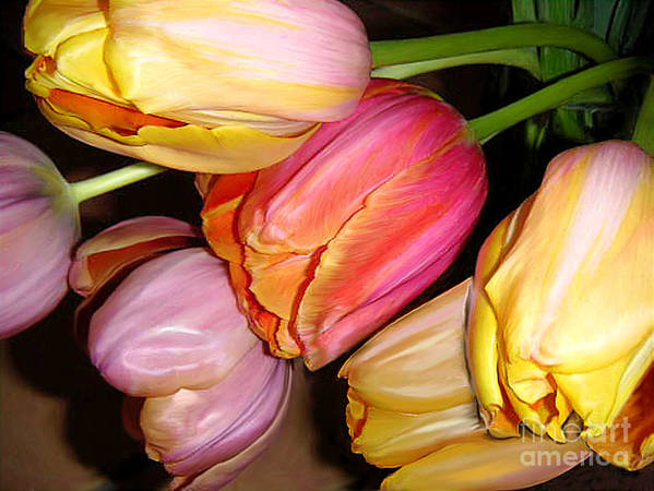 Nature Poster featuring the photograph Tulips All Together by Lucyna A M Green