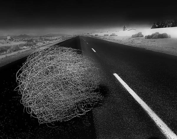 Tumbleweed Poster featuring the photograph Tumbleweed by Jim Painter