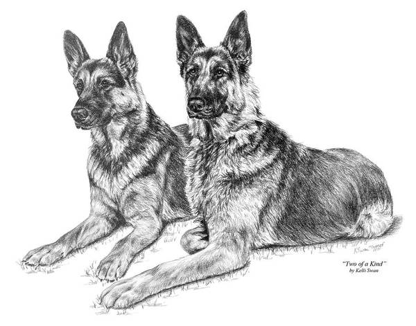German Poster featuring the drawing Two Of A Kind - German Shepherd Dogs Print by Kelli Swan